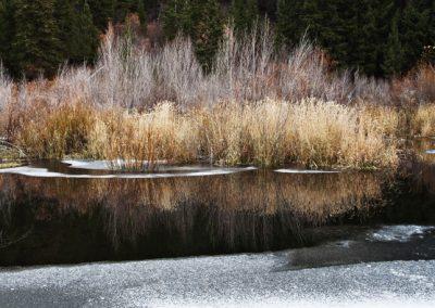 Deer Creek Fall Reflection