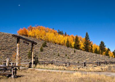 Moon Over Galena Ranch